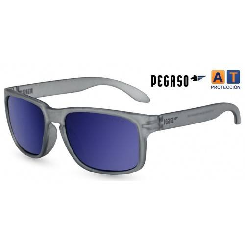 Gafas Pegaso ROCKY solar flash gris